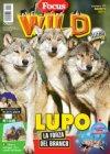 focus-wild-rivista-online
